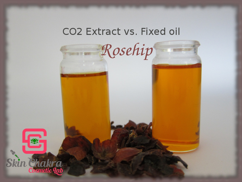 Rose hip oil and CO2 extract