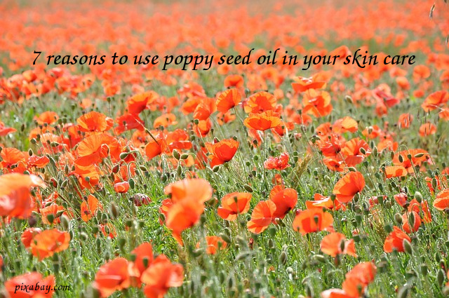 7 good reasons why you should use poppy seed oil in your skin care 7 good reasons why you should use poppy seed oil in your skin care products mightylinksfo