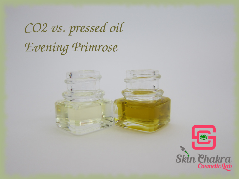 evening primrose oil and CO2 extract