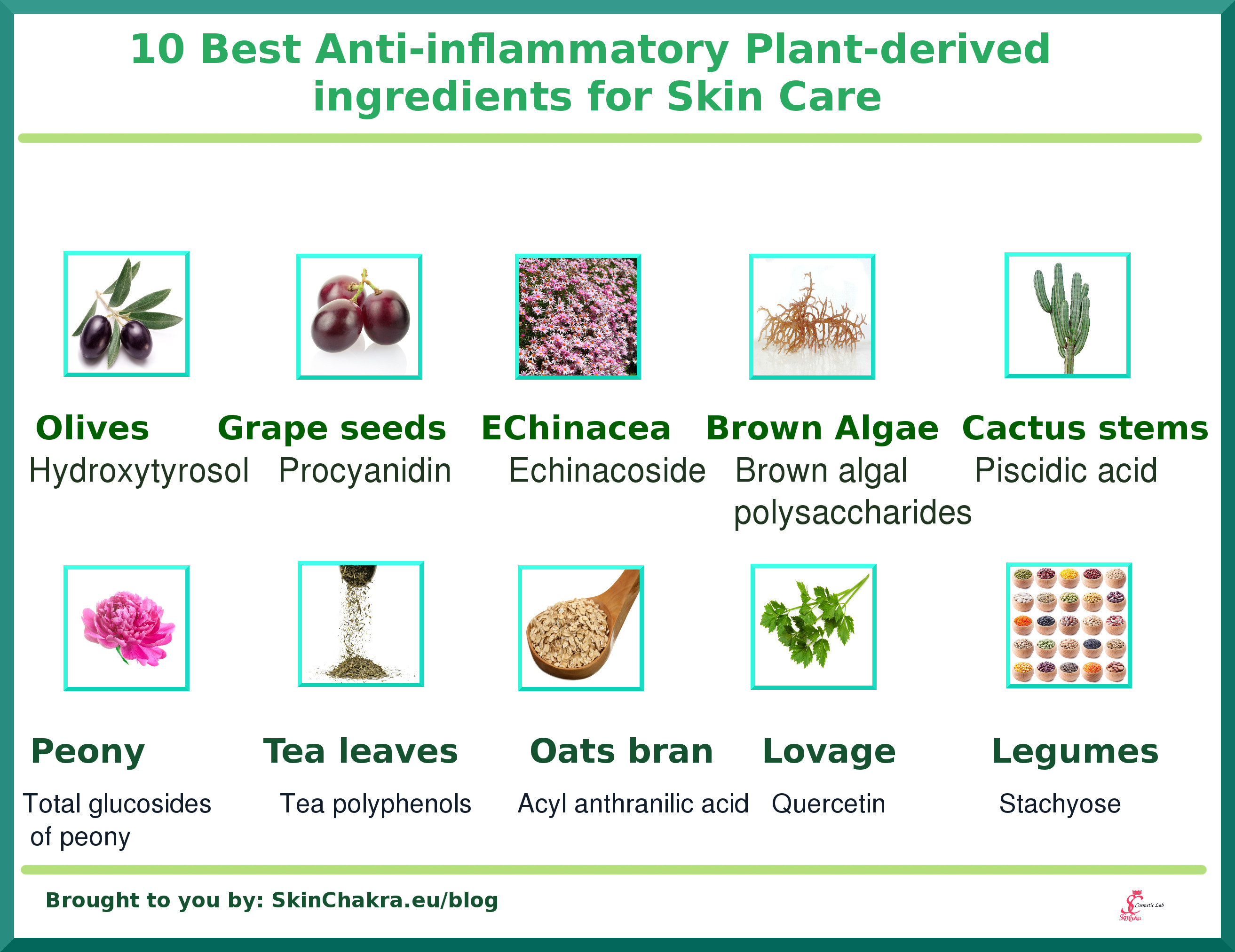 anti-inflammatory natural ingredients