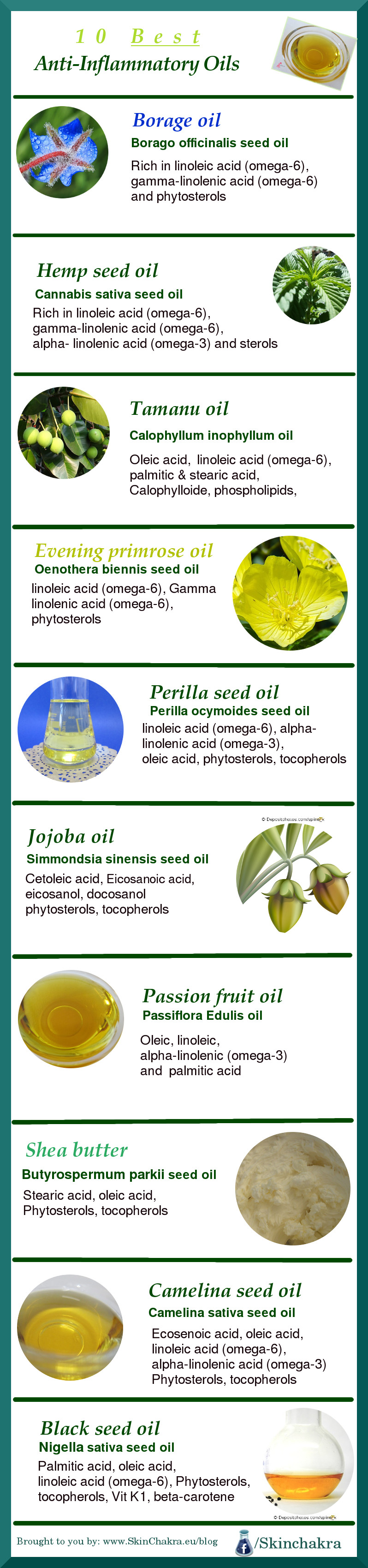 anti-inflammatory plant oils-infographic