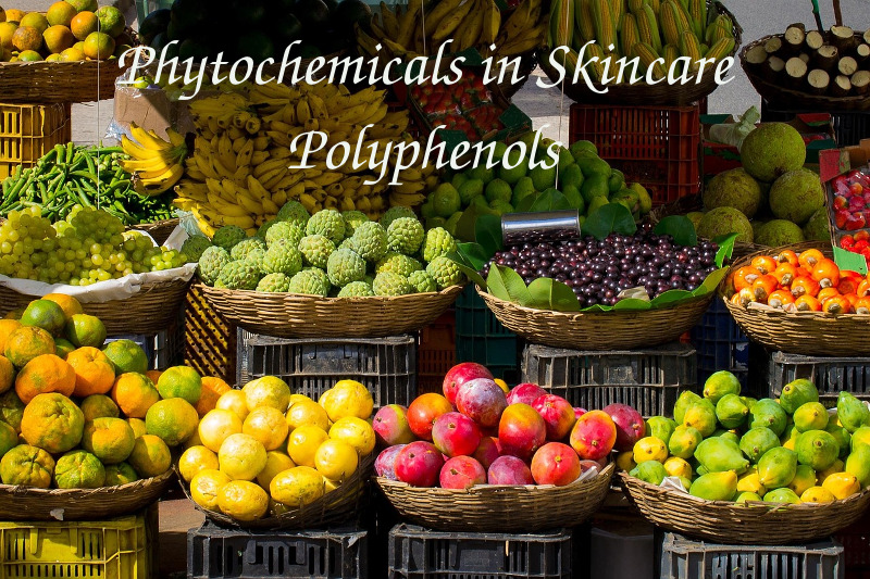 polyphenols in plant extracts