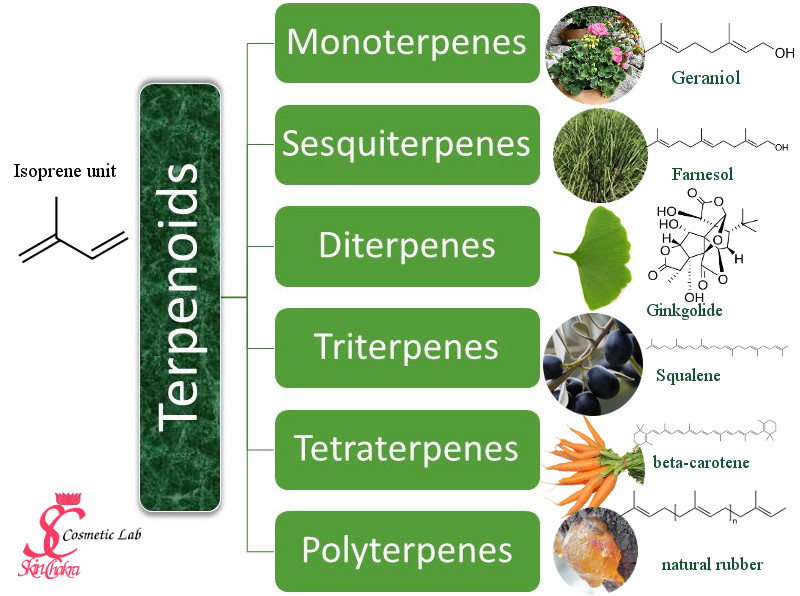 terpenoids and plant extracts