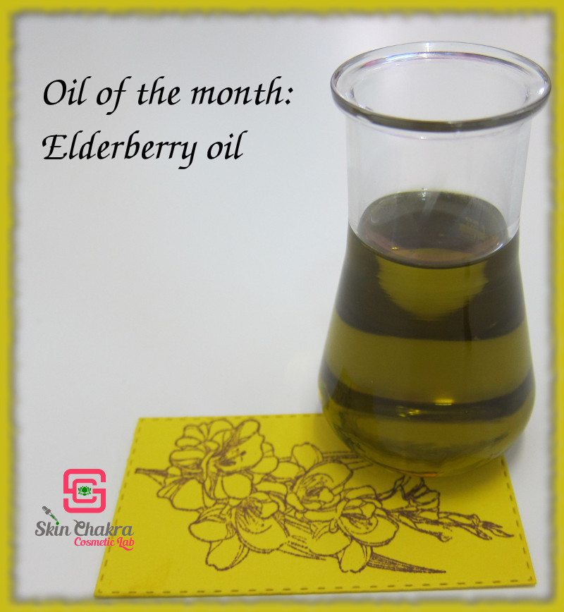 elderberry oil profile